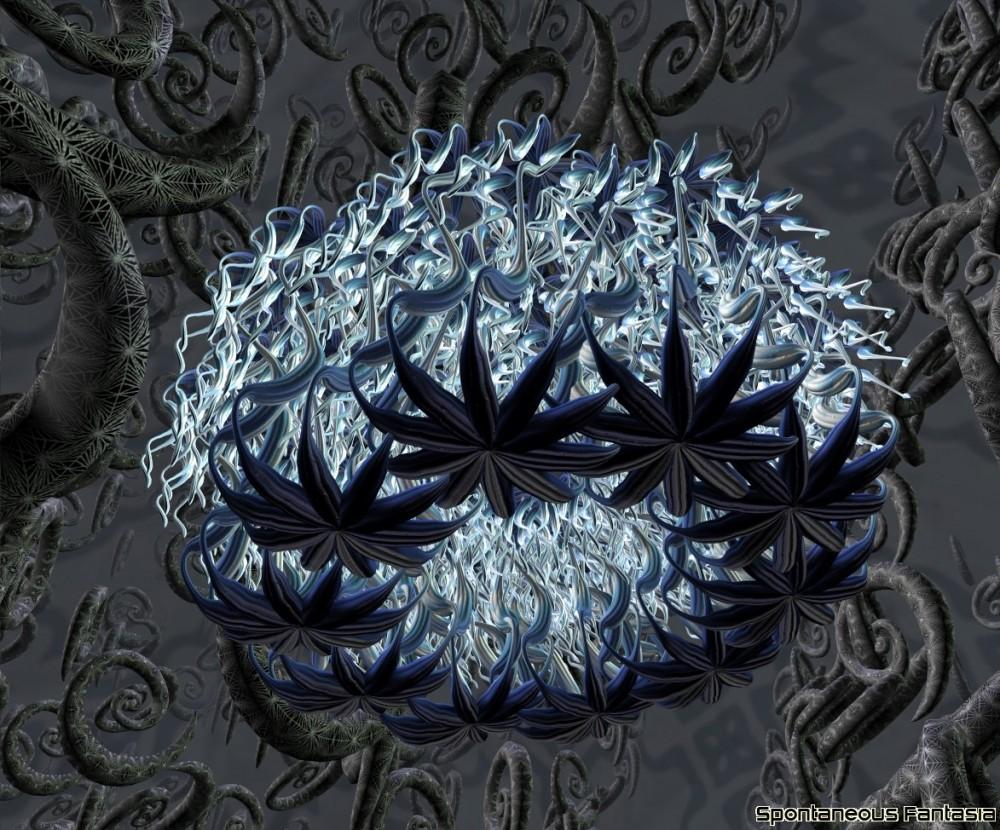 Spinobifidae 015